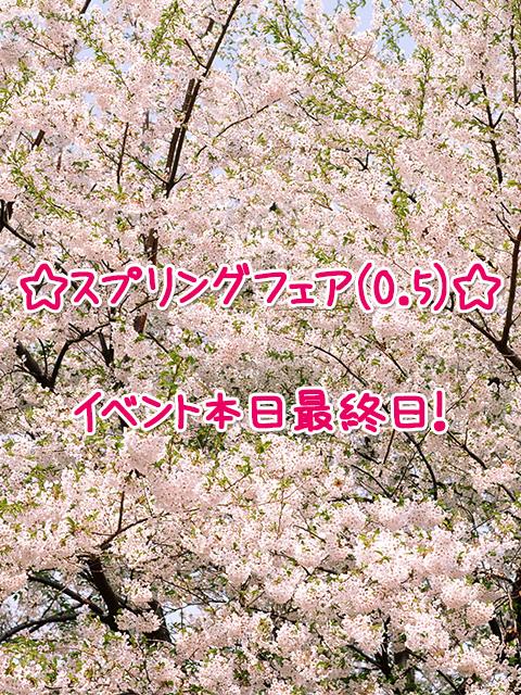 スプリングフェア(0.5)イベント本日最終日